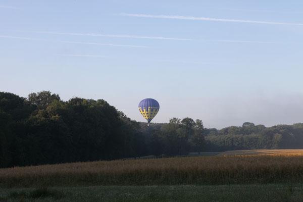Montgolfière au dessus des arbres