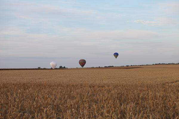 montgolfières au dessus de la campagne